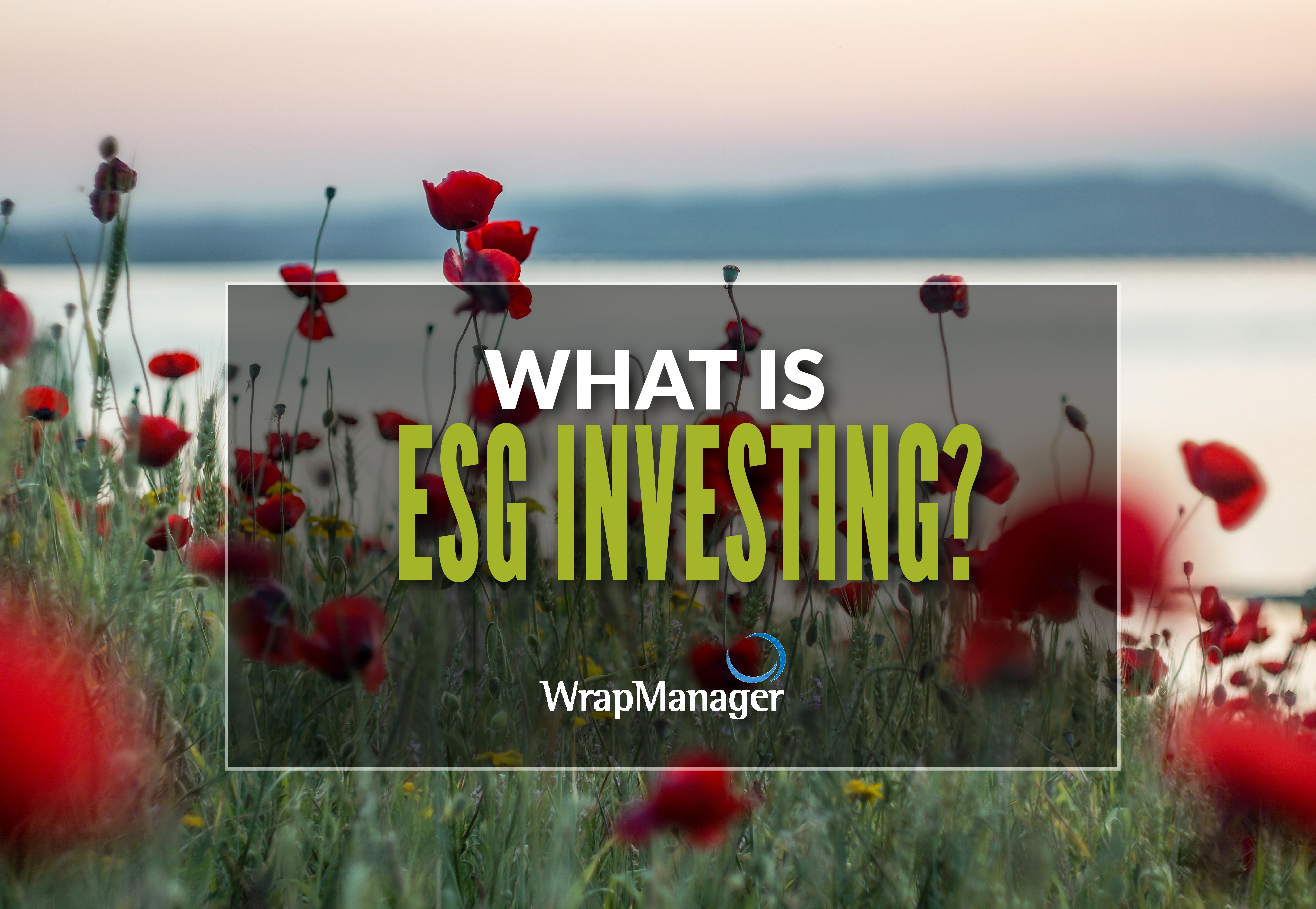Understanding the Basics of ESG Investing