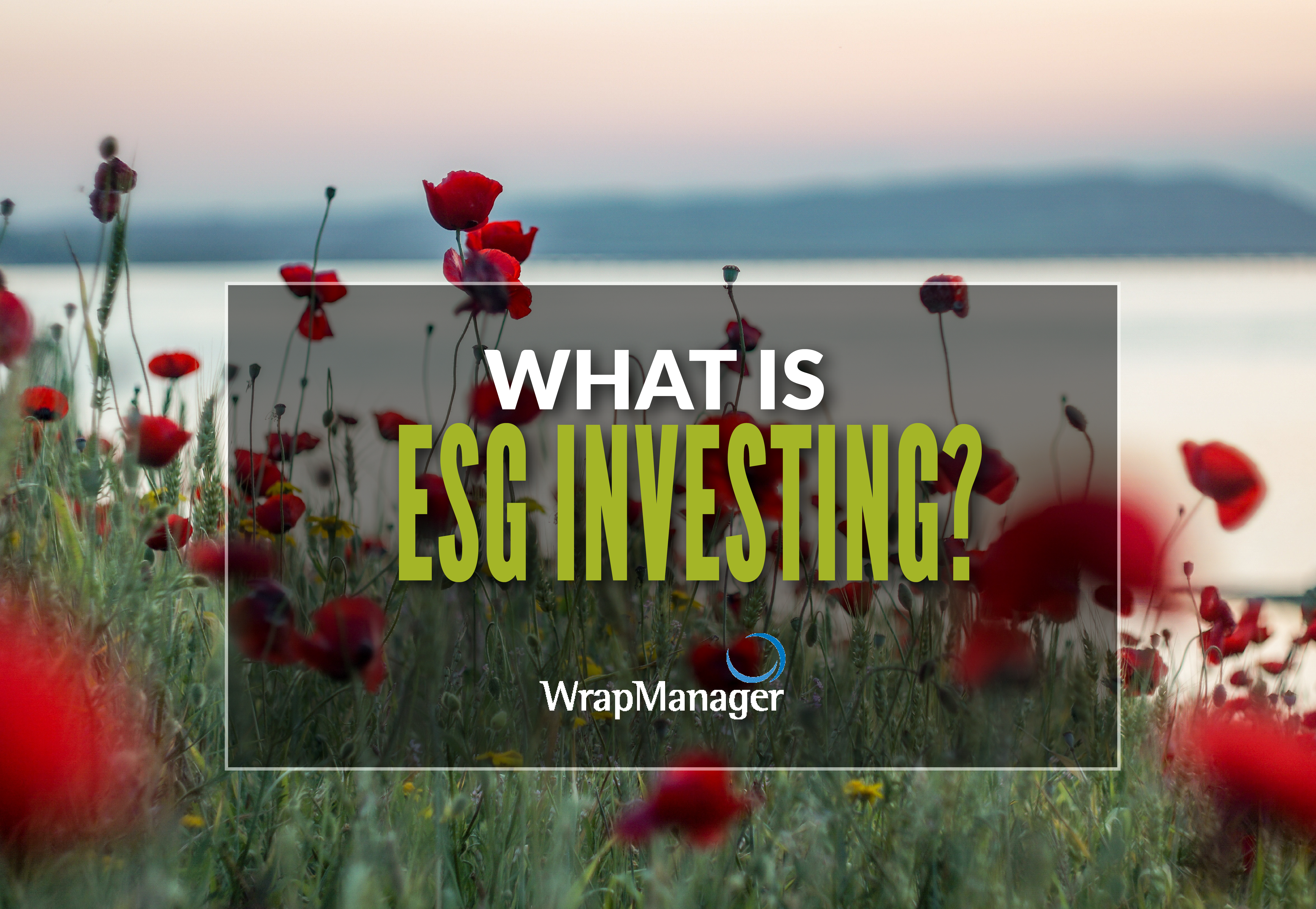 Introduction to ESG Investing