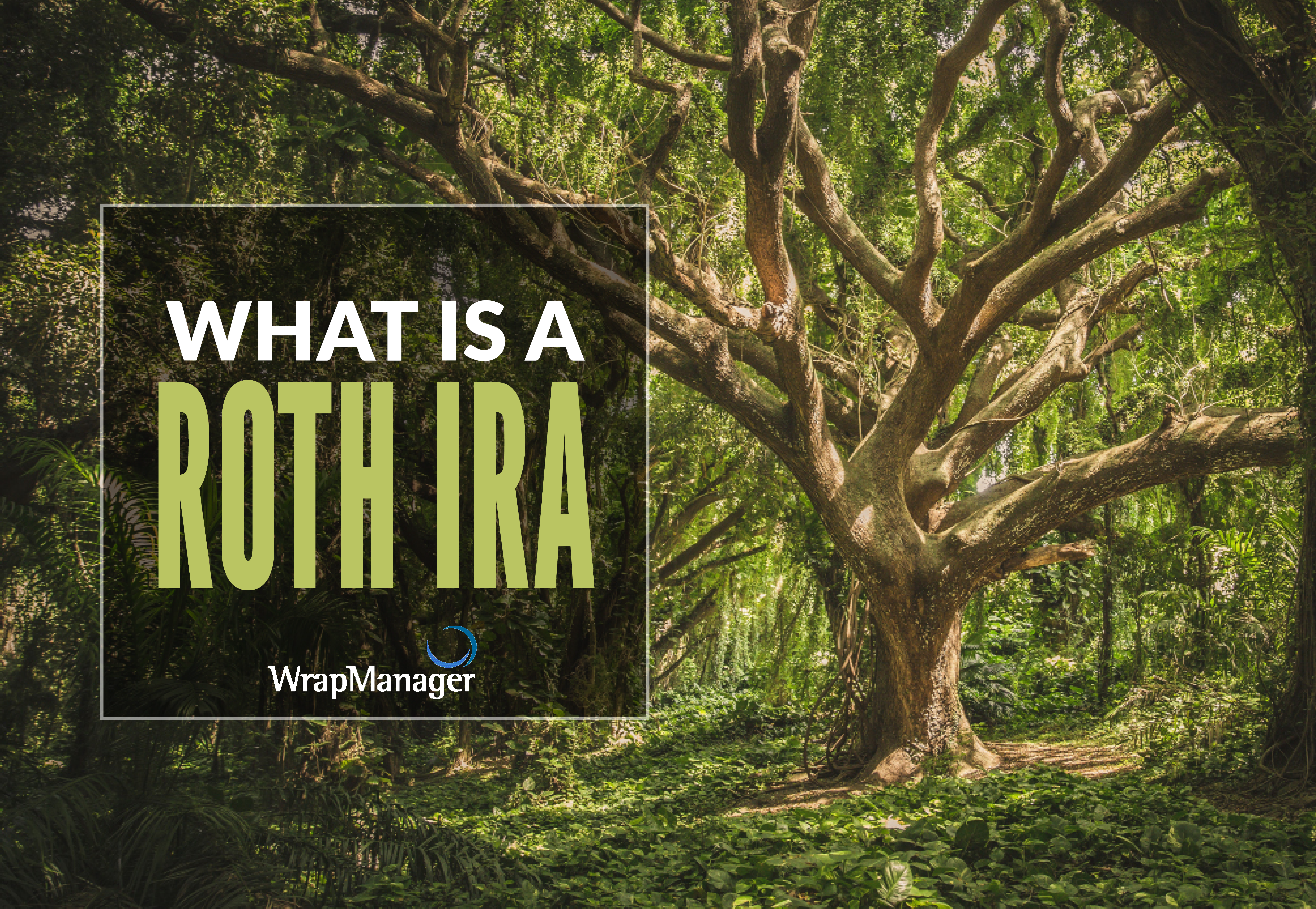 The Quick and Easy Guide to Roth IRAs
